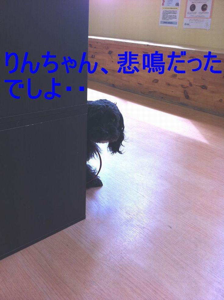 012_2